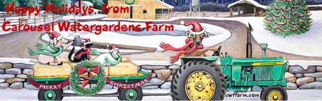 cwffarm-Christmas-on-the-Farmjohn deere tractor and farm animals1 burgandy font-950x300