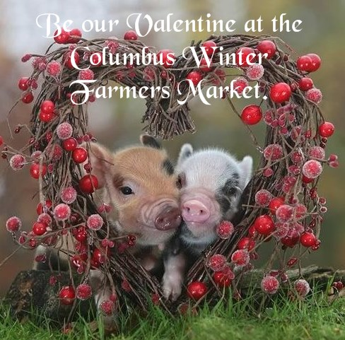 CWFM Valentine pigs in a heart
