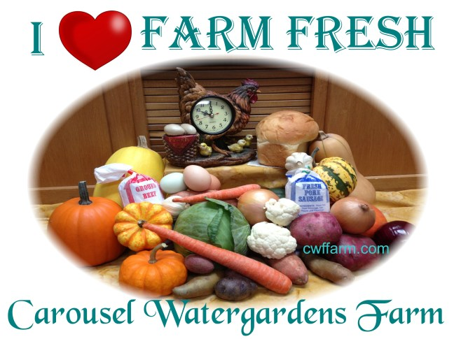 IMG_1740ovalsftd cwffarm i luv farm fresh 2