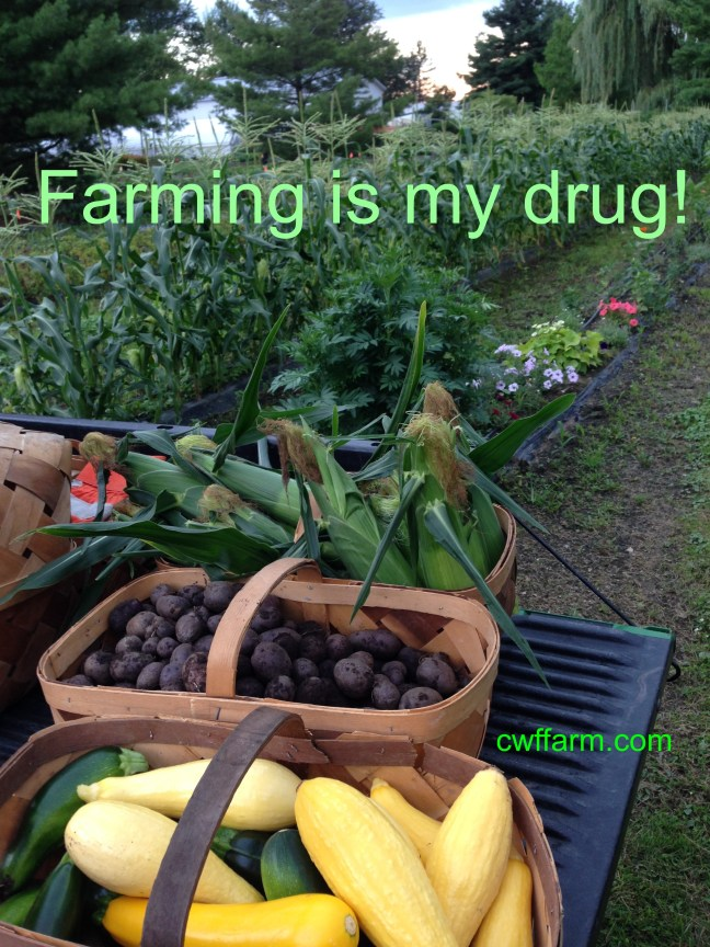 IMG_8187cwffarm Farming is my drug