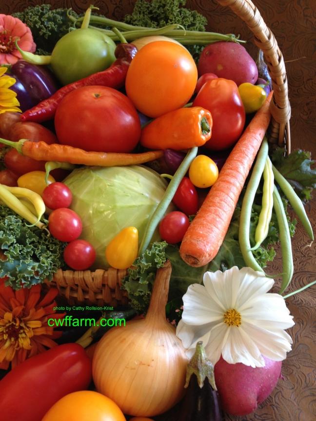 img_0911sgnd-cwffarm-basket-of-vegetables-white-cosmos.jpg