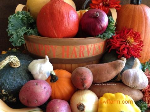 IMG_2834sgnd cwffarm fall produce