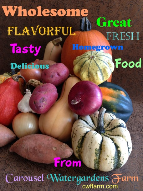 IMG_2702cwffarm word collage of veg