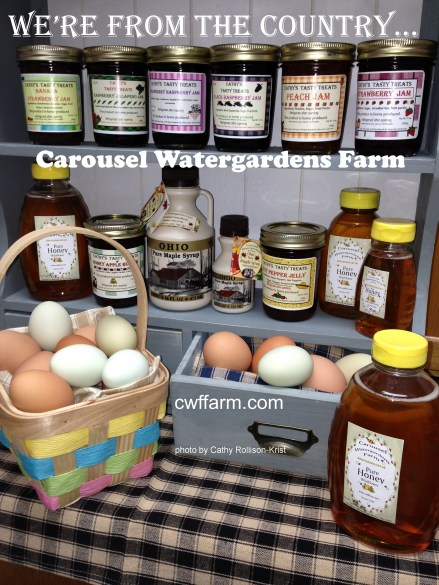 IMG_2995-D cwffarm pantryfare eggs & shelves were from the country