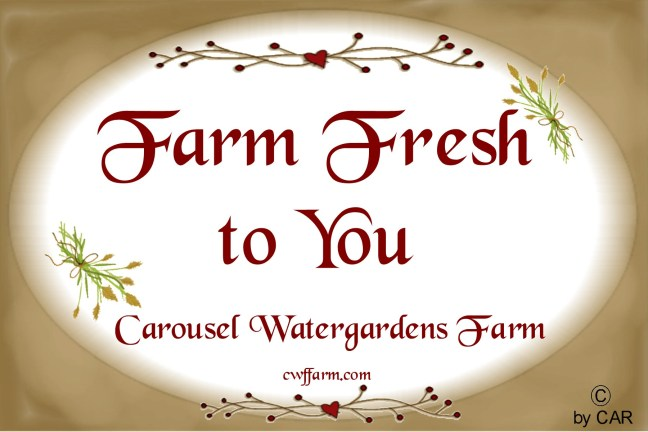 cwffarm farm fresh to you oval