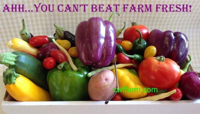 IMG_4214C- cwffarm Ahh you can't beat farm fresh