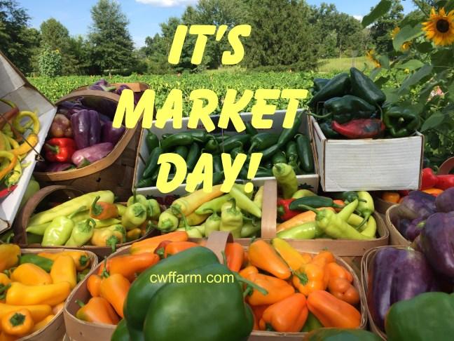IMG_9495cwffarm Market day