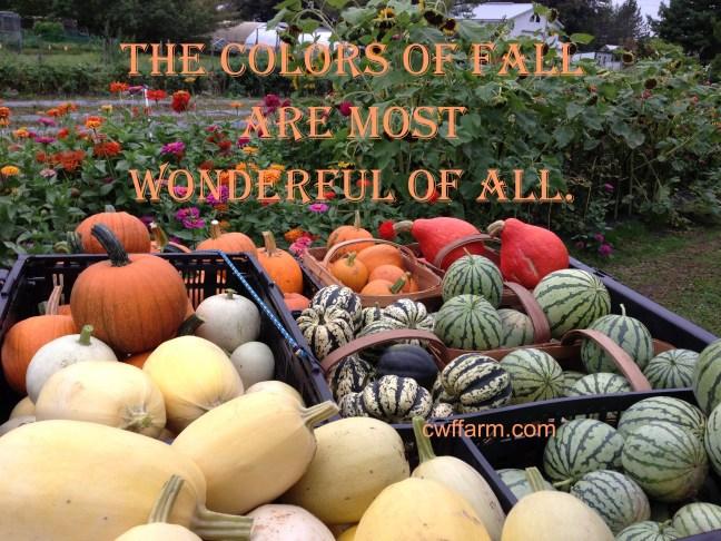 IMG_7654cwffarm colors of fall