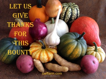 IMG_7825sgnd cwffarm let us give thanks for bounty UpperLeft