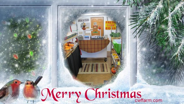 cwffarm xmas window view of farm store