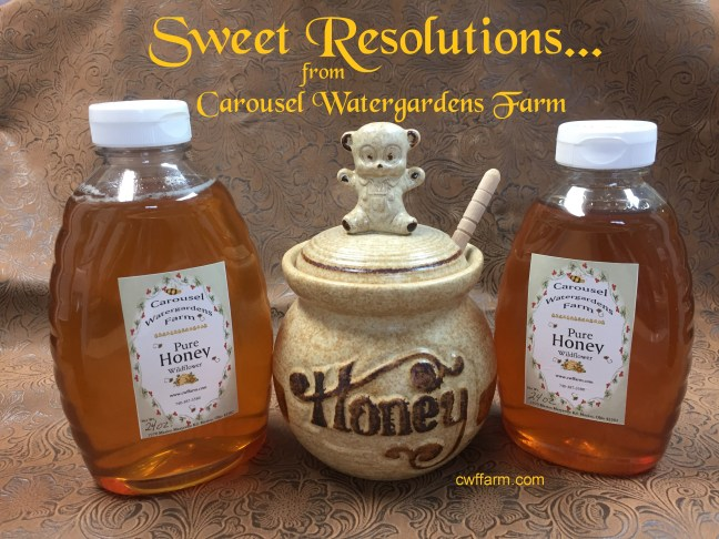 img_3206cwffarm sweet resolutions honey