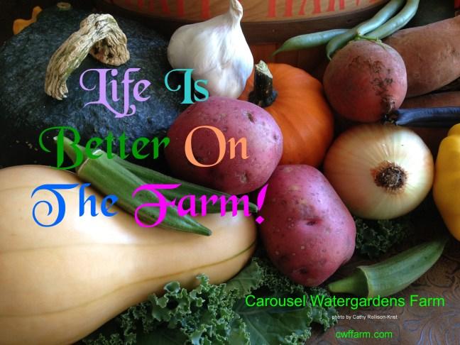 IMG_2880CWFFarm Life is better on farm Oh Ag Week2