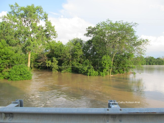IMG_3977sgnd Tymochtee Creek flowing out of banks into town of Marseilles June 16 2019