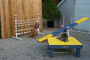 P0007906sgnd sandy & gracie with agility equip