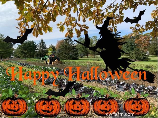 IMG_0346cwffarm Happy Halloween