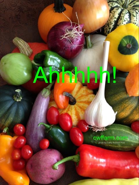 img_7736sgnd-cwffarm-veggies-ahhh.jpg