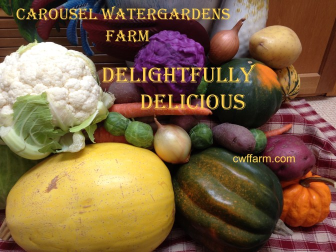 IMG_6457cwffarm fall vegs delightfully delicious
