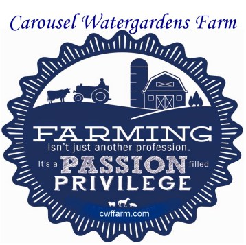 TUC cwffarm Farming is a passion with banner