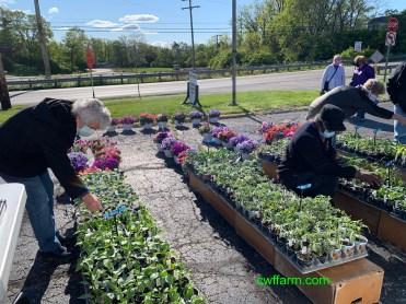 IMG_3928cwffarm plants & shoppers