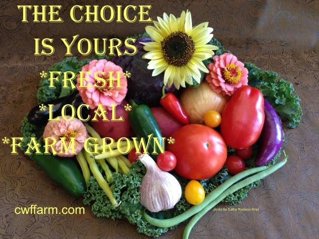 IMG_0950sgnd cwffarm choice is yours